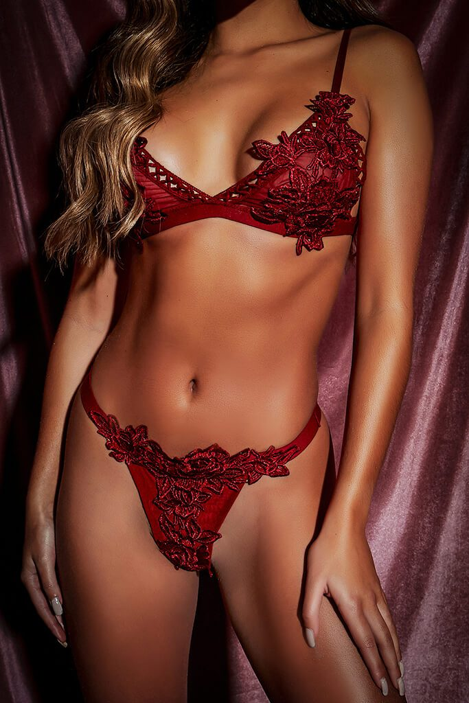 Red Lace Applique Trim Lingerie Set view 5