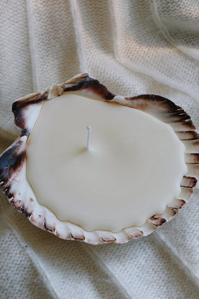 Cream Wick And Tide Honey Clementine Clam Shell Candle view 3