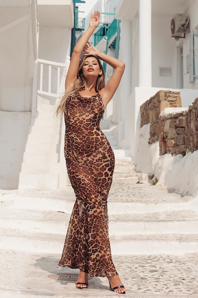Brown Leopard Print Maxi Dress view 3