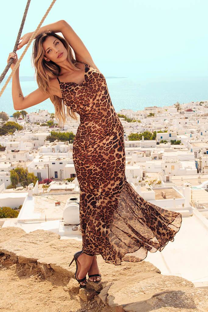 Brown Leopard Print Maxi Dress