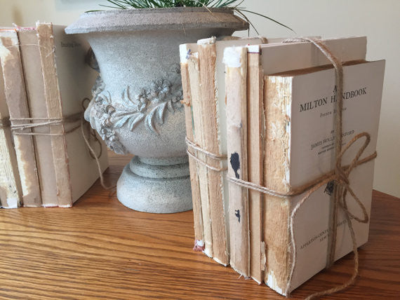 Shabby Chic Set of Three Uncovered Books