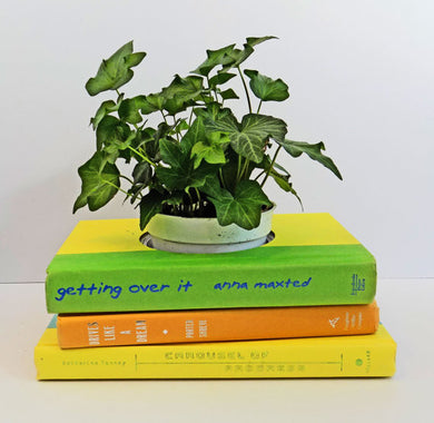 Book Planter in Bright Yellow