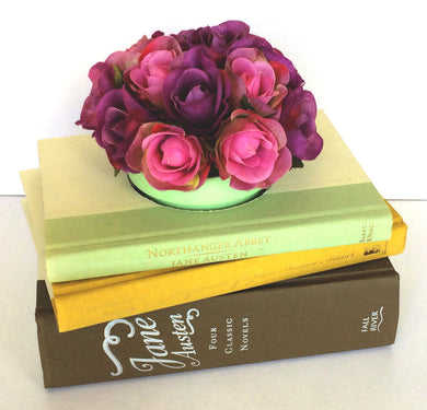 Jane Austen Book Planter In Earth Tones