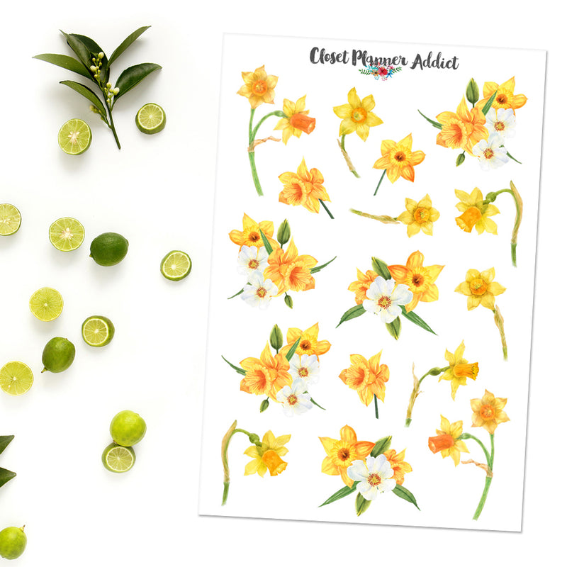 Watercolour Daffodils Planner Stickers (S-409)