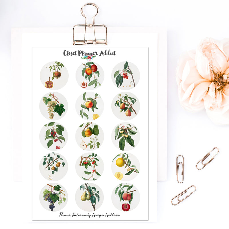 Pomona Italiana by Giorgio Gallesio Planner Stickers (S-478)