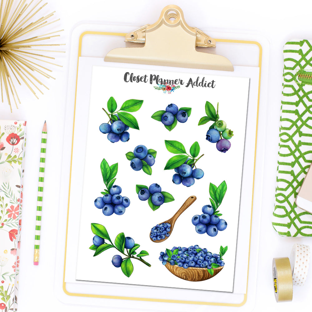 Blueberries Planner Stickers (S-509)