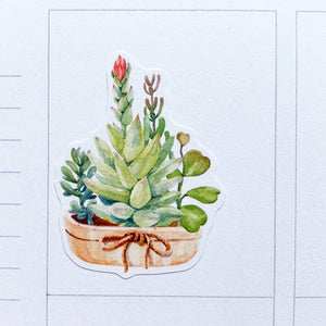Watercolour Succulents Planner Stickers (MGB-APR20)