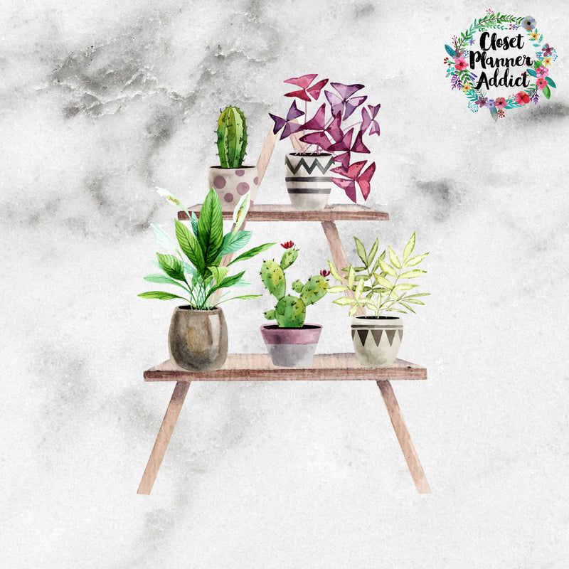 Plants on Shelf Die Cut Stickers (DC-014)