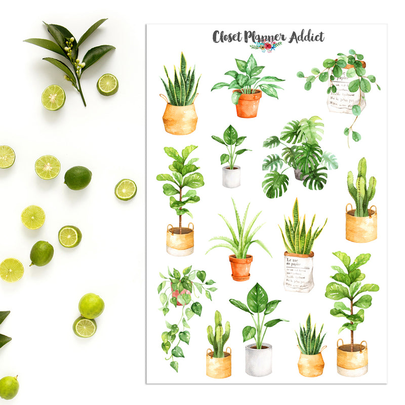 Watercolour Plants Planner Stickers (MGB-JAN19)