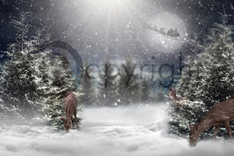 Winter Christmas Digital