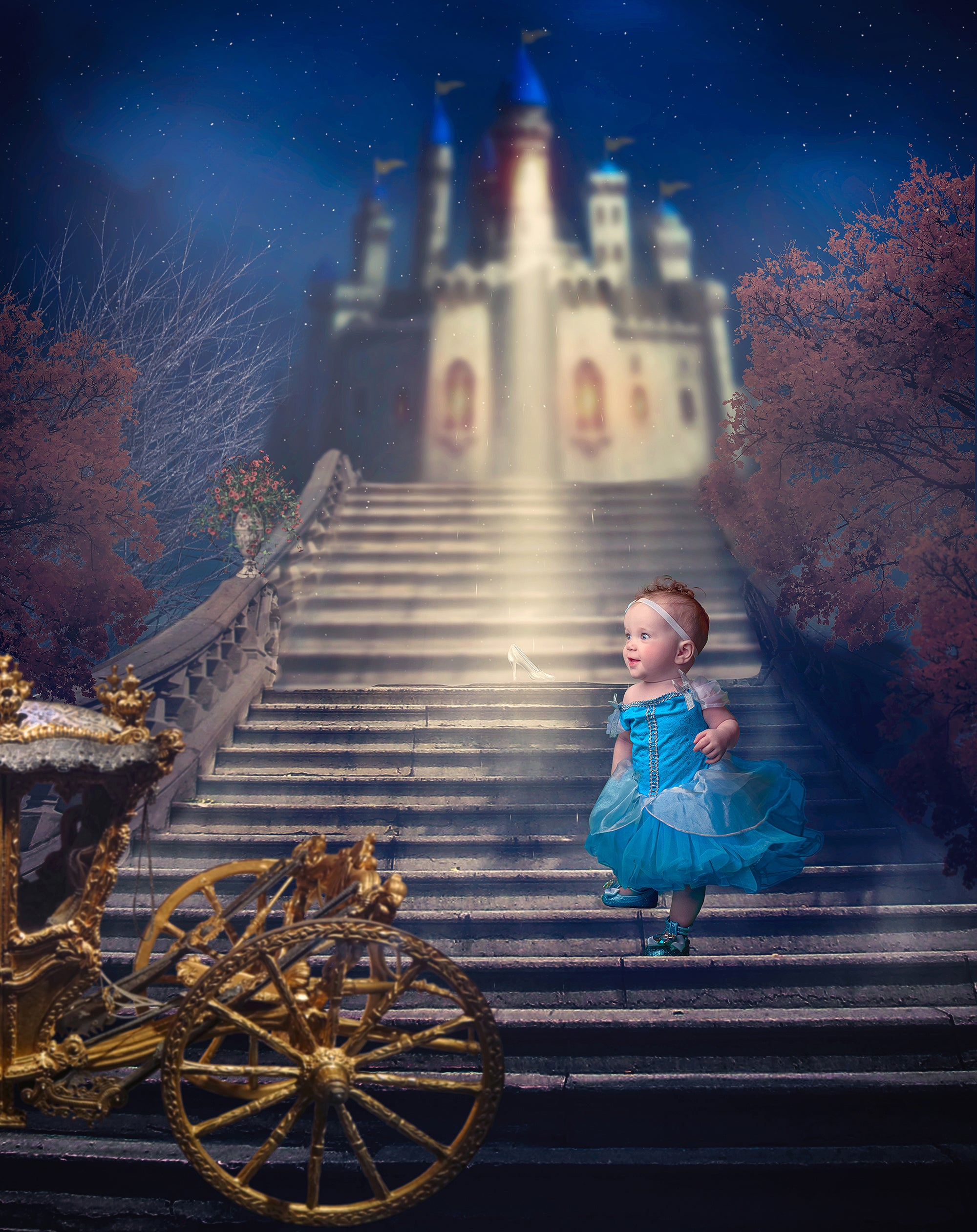 Cinderella Digital Background