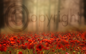 Floral Digital Background