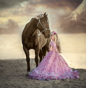Photoshop Photograph  Compositing Tutorial (Princess in Pink )