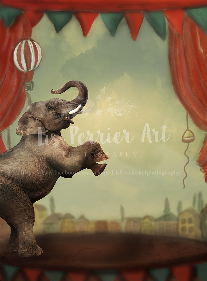 "Digital Background (2) ""Circus"" Handmade"