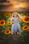 Beauty in the Sunflower Tutorial Mp4