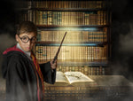 Hogwarts Library Inspired in Harry Potter library