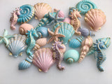 Shells - Small Set