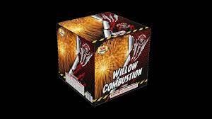 Willow Combustion