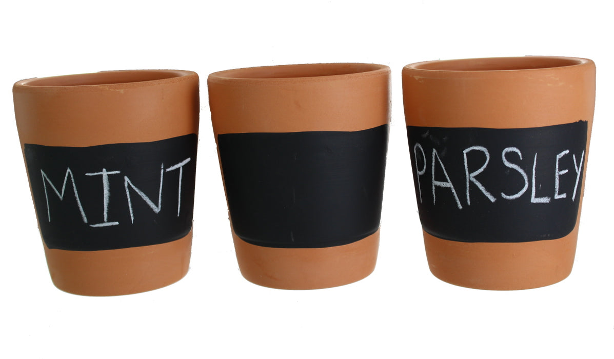 Roots & Shoots Terracotta Set of 3 Chalkboard Planters Pots