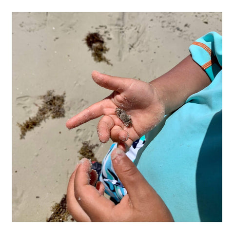 Child hand with small crab
