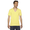 2456-american-apparel-lemon-v-neck