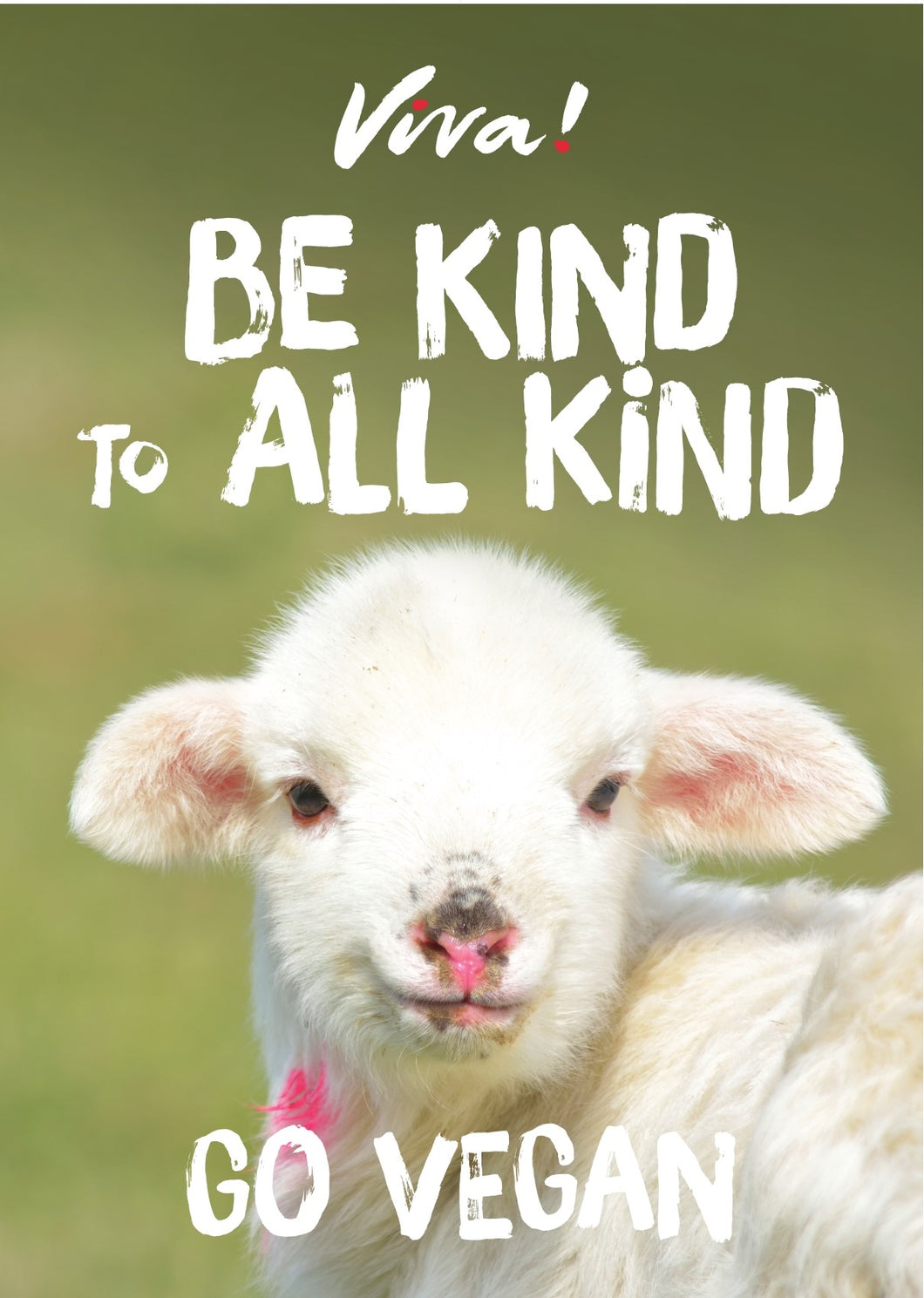 Viva! Be Kind to All Kind Lamb Poster