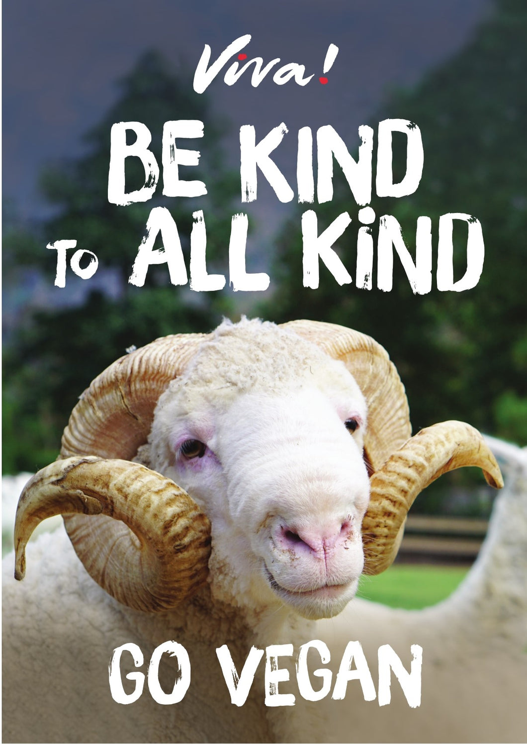 Viva! Be Kind to All Kind Sheep Poster