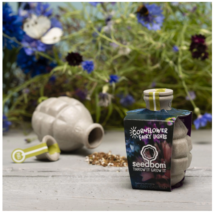 Cornflower Fairy Lights Seedbom