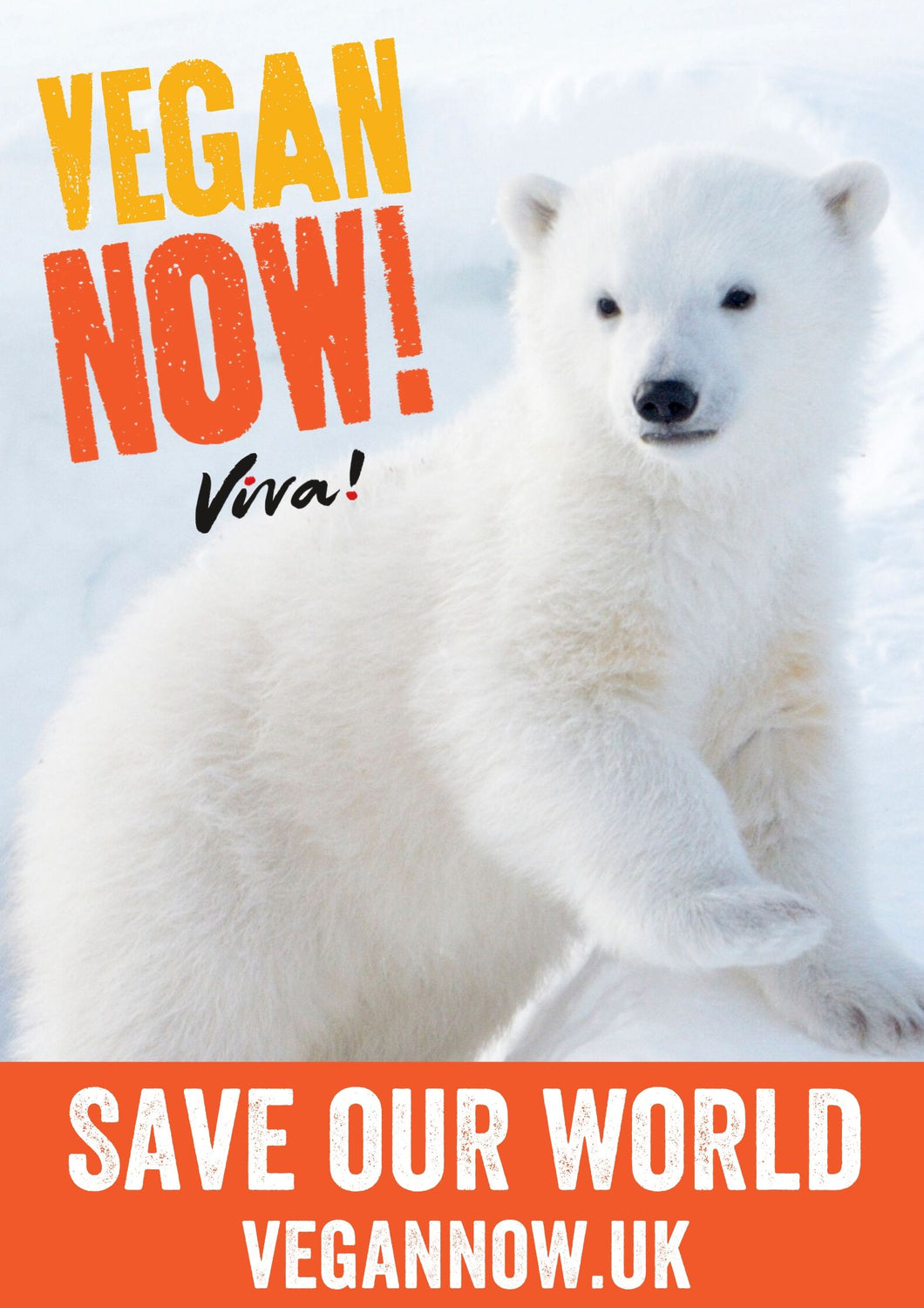 Vegan Now! Polar Bear Poster