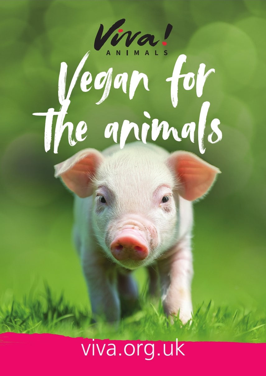 Viva! Vegan for the Animals Poster