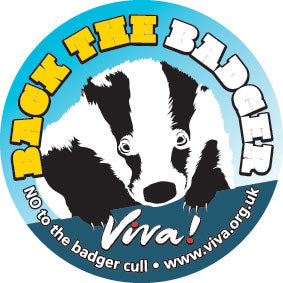 Back the Badger Window Sticker
