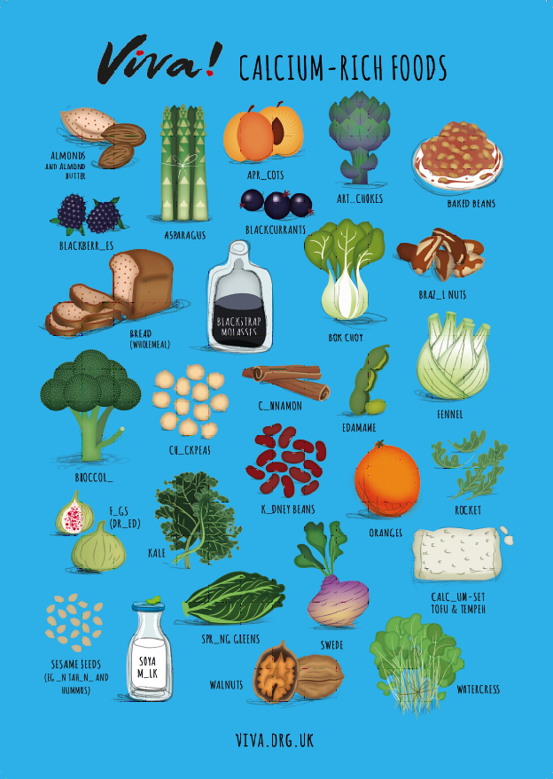 Illustrated Calcium Nutritional Poster