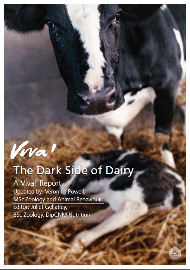 The Dark Side of Dairy Report