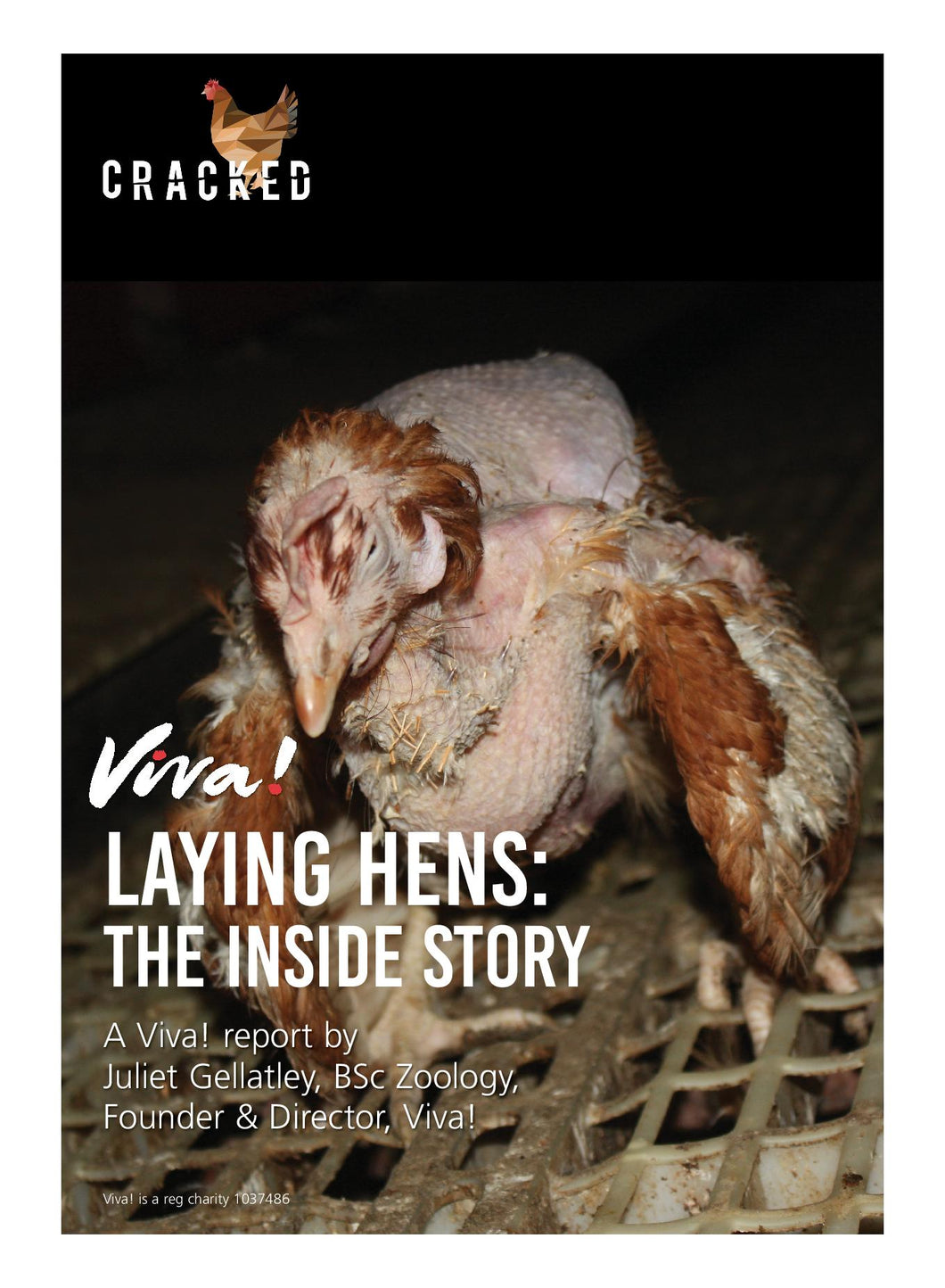 Laying Hens: The Inside Story Report