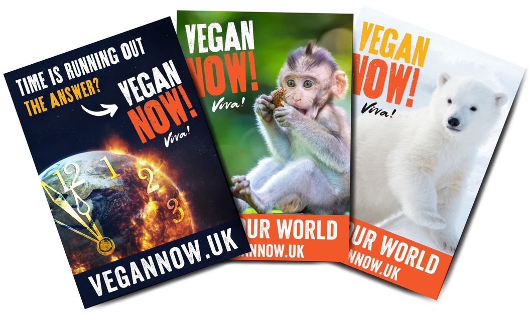 Vegan Now! Poster Set