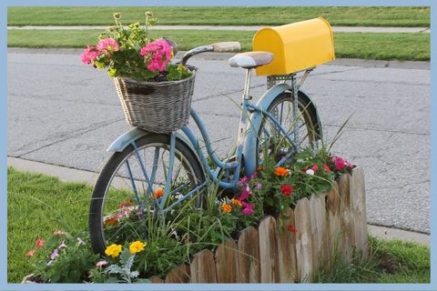 Flowerbed Bicycle