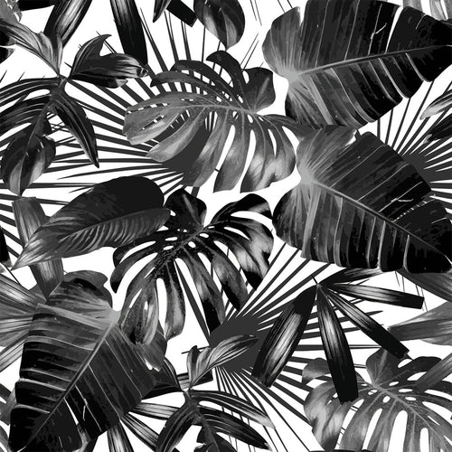 Black & White Tropical Palm Trees