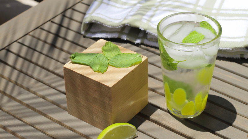 basic recipes mojito