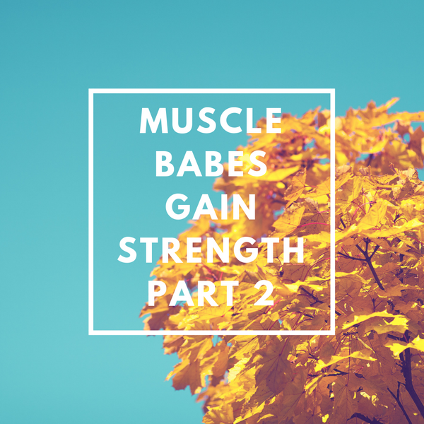 MUSCLE BABE WORKOUTS - GAIN STRENGTH PART 2