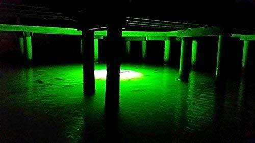 Green Blob Jumbo BLOB 30000 Lumens 600 LED Underwater Fishing Light for Docks 110 Volt AC with 3 Prong Plug Sports Green Blob Outdoors