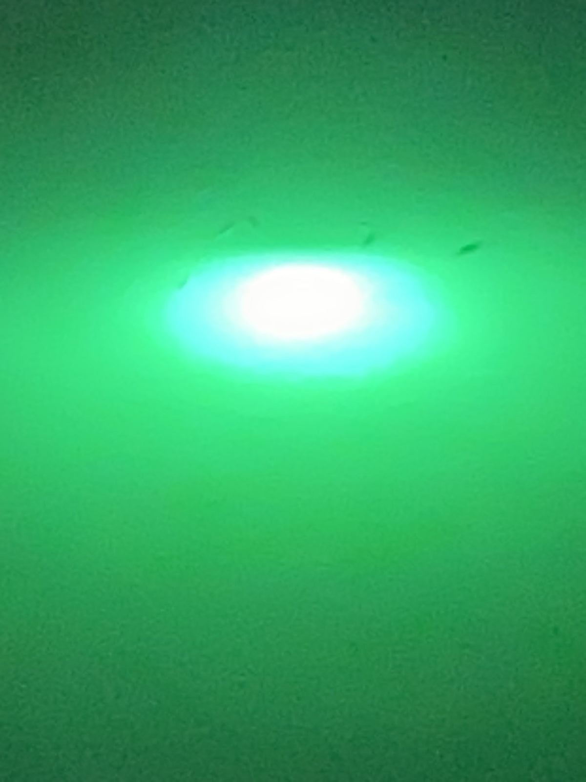 Green Blob Underwater Fishing Light 15000 Lumen with Alligator Clips and Cigarette Lighter adapter with 30ft Cord Fishing Lights Green Blob Outdoors