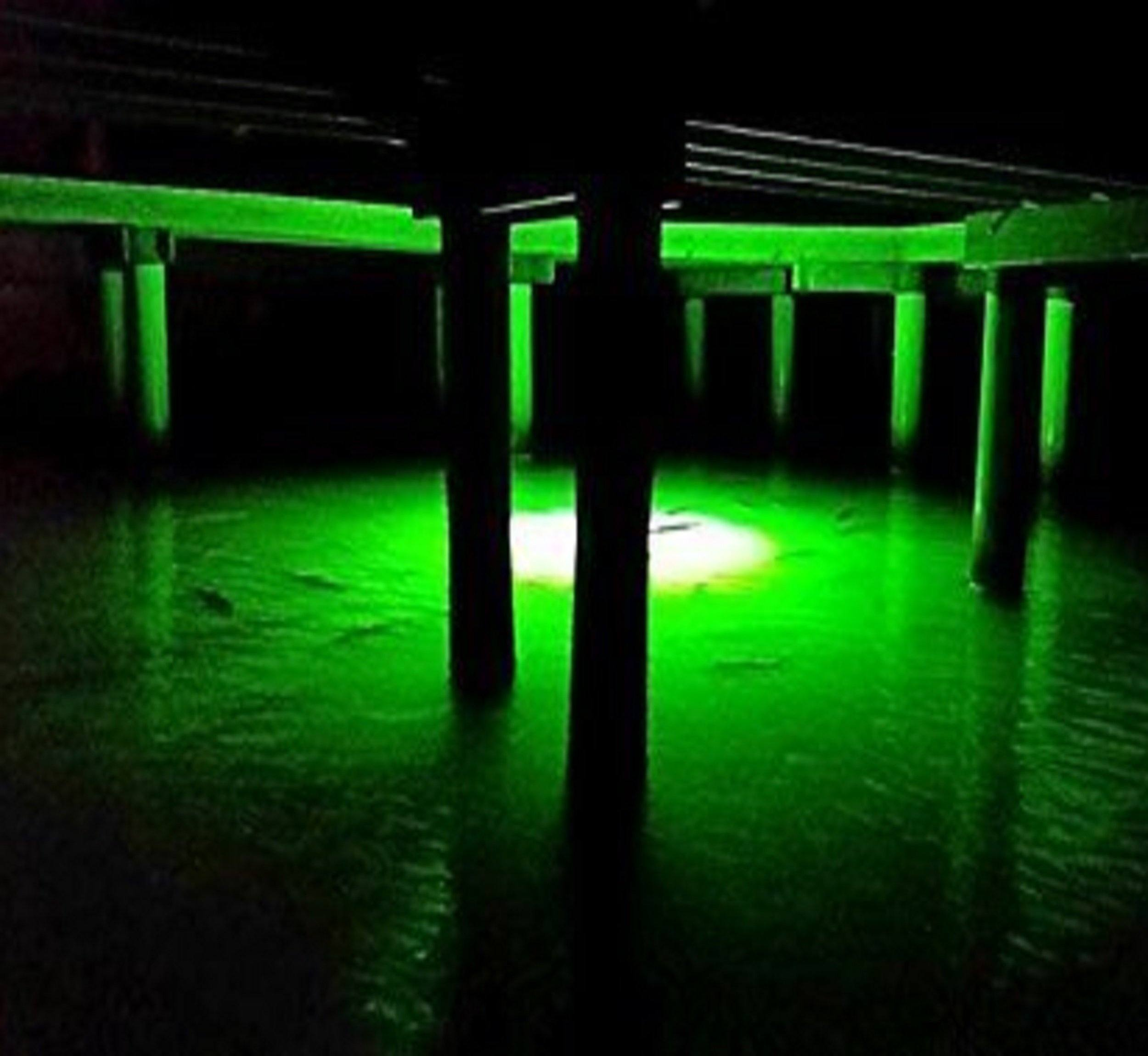 Green Dock 15000 Lumen LED Underwater Fishing Light with 110V Transformer 30ft Cable with 3 Prong Plug Fishing Lights Green Blob Outdoors