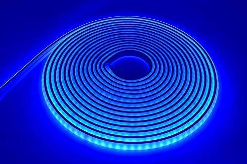 LEDeXTREME LED Neon Rope Light LED Flexible Tube Light 12VDC LED Neon Strip Light IP68 Waterproof, Submersible, Decoration Light (Blue) Lighting LEDeXTREME Blue 19ft