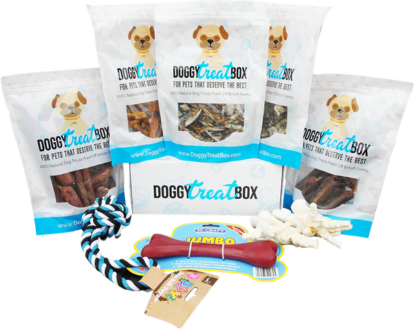 Puppy Doggy Treat Box