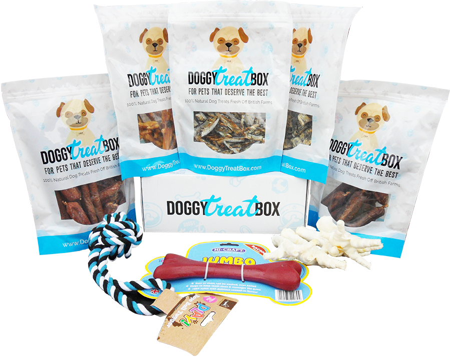 Regular Doggy Treat Box