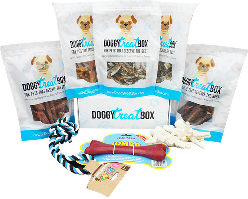 Ultimate Doggy Treat Box