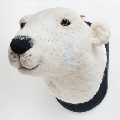 Pepe the Polar Bear