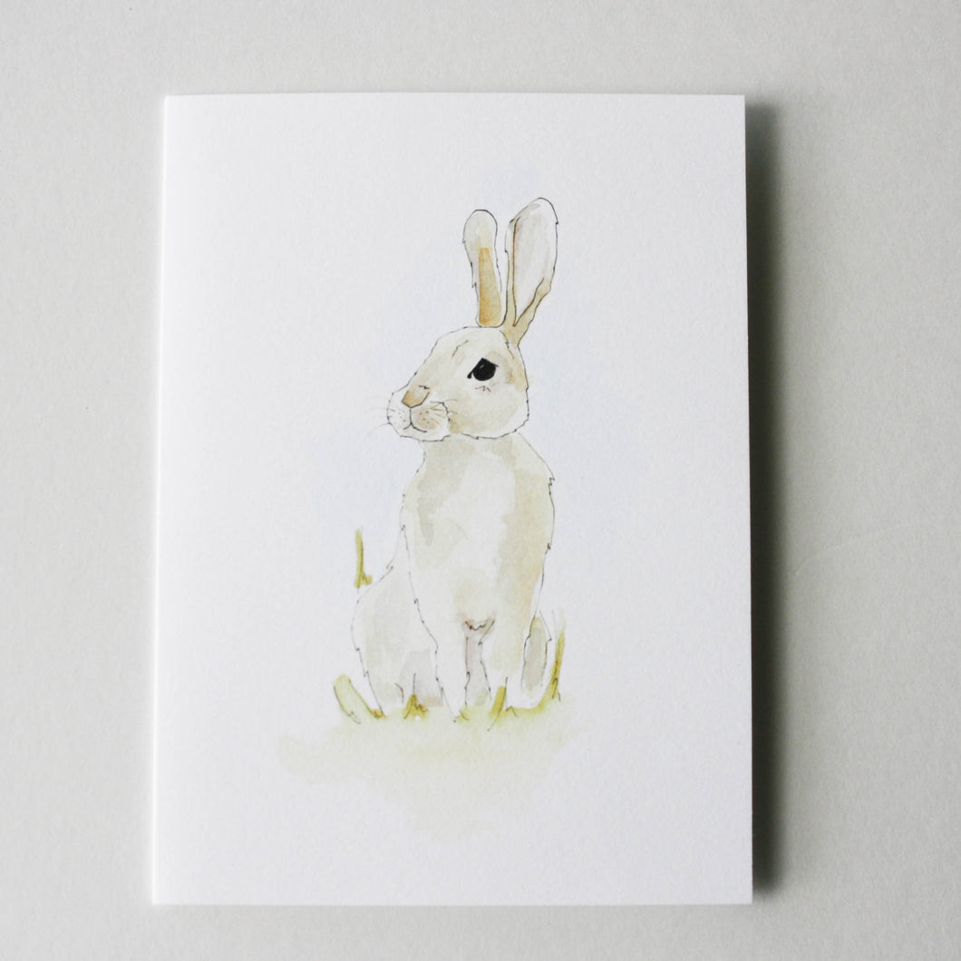 rabbit greeting card