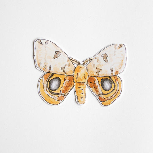 moth vinyl sticker