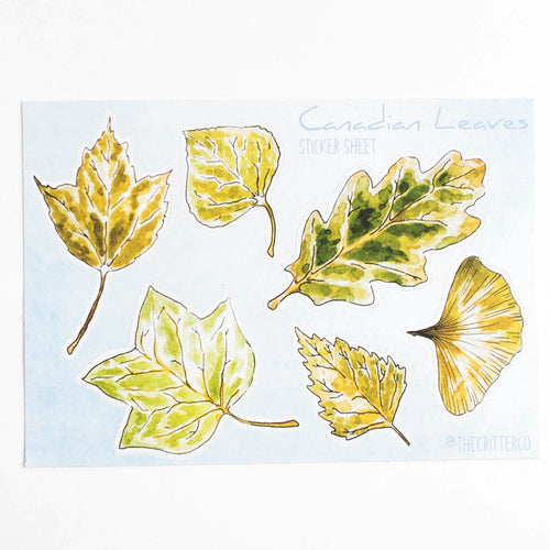Canadian leaves vinyl sticker sheet